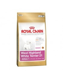 WEST HIGHLAN WHITE TERRIER 21 Adult 1.5 kg.